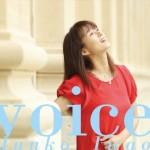 岩男潤子「Voice」