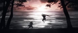 宮本武蔵―双剣に馳せる夢―