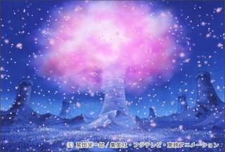 "DVD公式サイトメールマガジン「ニュース・クー」""奇跡の桜""スクリーンセーバー"